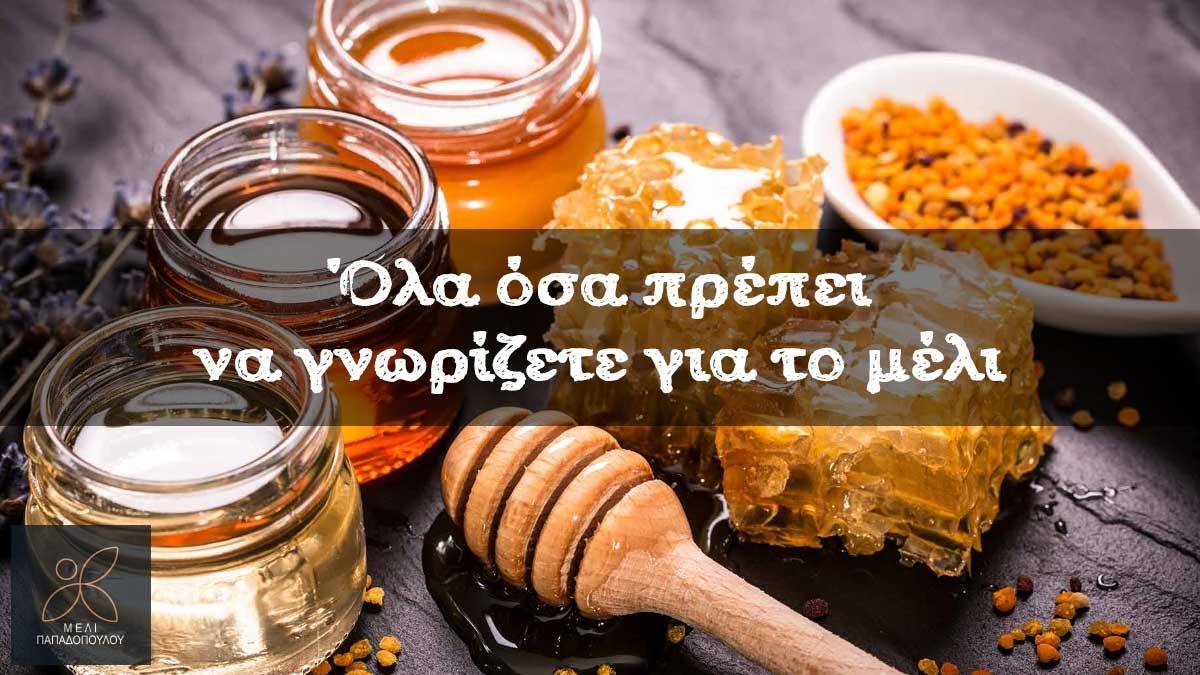 Όλα όσα πρέπει να γνωρίζετε για το μέλι